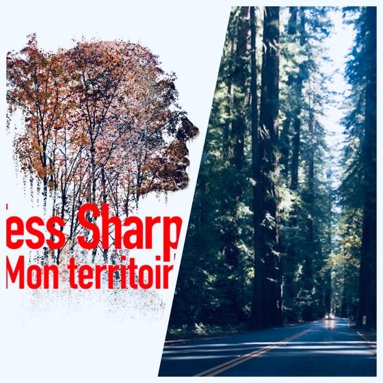Chronique_litteraire_Tess_Sharpe