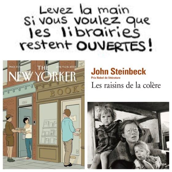 les_raisins_de_la_colere_john_steinbeck